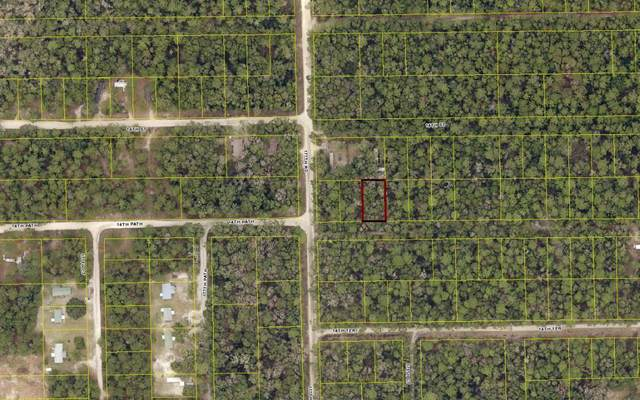 TBD 14TH PATH, Live Oak, FL 32060 (MLS #107822) :: Better Homes & Gardens Real Estate Thomas Group
