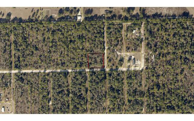 TBD 220TH PATH, OBrien, FL 32071 (MLS #107879) :: Better Homes & Gardens Real Estate Thomas Group
