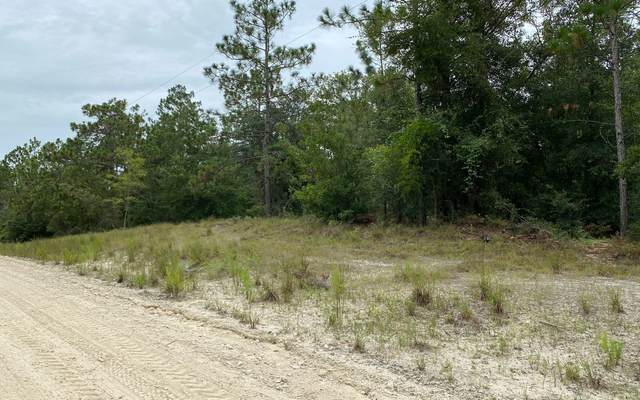 LOT 1 192ND TER, OBrien, FL 32071 (MLS #108341) :: Better Homes & Gardens Real Estate Thomas Group