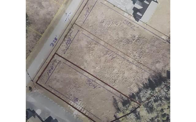 Canyon Ave, Live Oak, FL 32060 (MLS #108520) :: Better Homes & Gardens Real Estate Thomas Group
