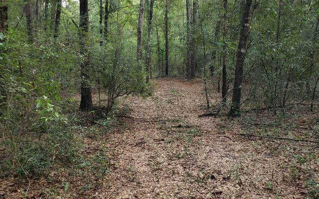 Lot 27 163Rd Drive, OBrien, FL 32071 (MLS #108617) :: Better Homes & Gardens Real Estate Thomas Group