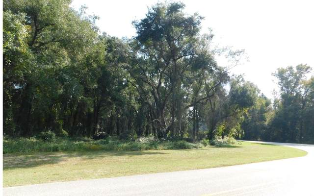 NW Commerce Drive, Lake City, FL 32055 (MLS #109071) :: Better Homes & Gardens Real Estate Thomas Group
