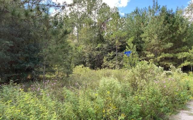 SE Remington Drive, Lee, FL 32059 (MLS #109136) :: Better Homes & Gardens Real Estate Thomas Group