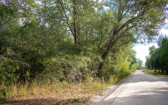 LOT 7 213TH ROAD, Live Oak, FL 32060 (MLS #109284) :: Better Homes & Gardens Real Estate Thomas Group