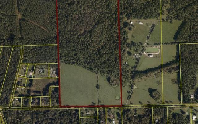 TBD NE 185TH STREET, Starke, FL 32091 (MLS #109311) :: Better Homes & Gardens Real Estate Thomas Group