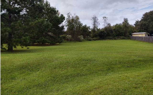 352 SW Buttercup Dr, Lake City, FL 32024 (MLS #109343) :: Better Homes & Gardens Real Estate Thomas Group