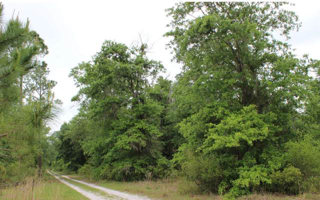 SW Pine Lake Rd, Lee, FL 32059 (MLS #109704) :: Better Homes & Gardens Real Estate Thomas Group