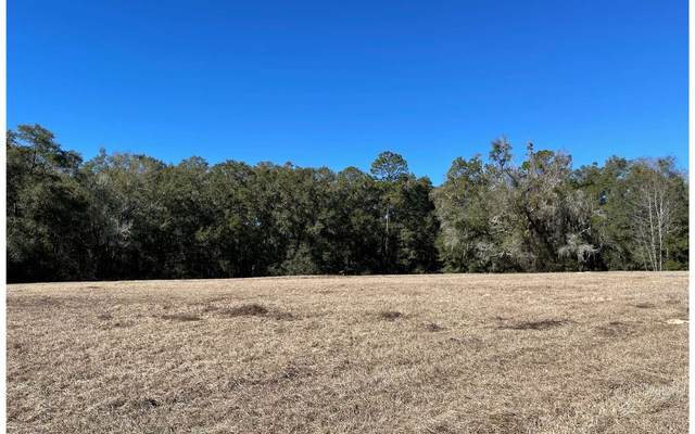 TBD SW Mossy Oak Way, Lake City, FL 32024 (MLS #109862) :: Better Homes & Gardens Real Estate Thomas Group
