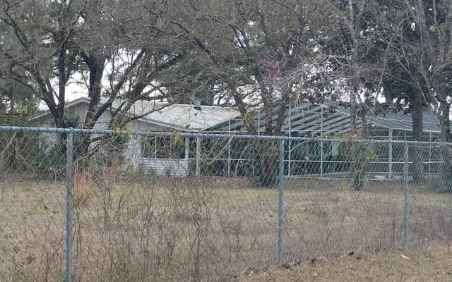 11609 231ST ROAD, Live Oak, FL 32060 (MLS #110281) :: Better Homes & Gardens Real Estate Thomas Group