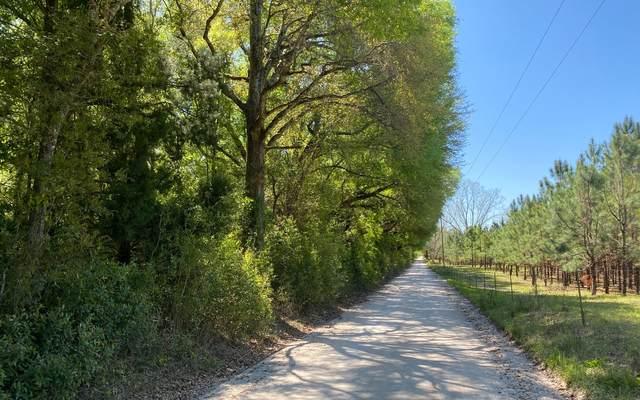 TBD 201ST RD, Live Oak, FL 32060 (MLS #110717) :: Better Homes & Gardens Real Estate Thomas Group