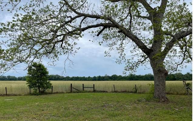 9899 191ST ROAD, Live Oak, FL 32060 (MLS #110824) :: Better Homes & Gardens Real Estate Thomas Group