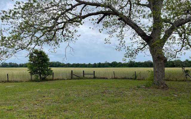 9899 191ST ROAD, Live Oak, FL 32060 (MLS #110825) :: Better Homes & Gardens Real Estate Thomas Group