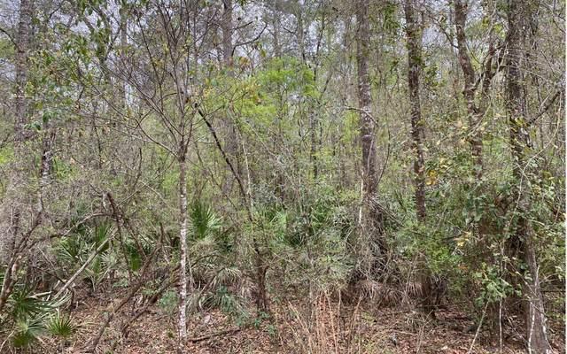 SE Wild Turkey Rd, Branford, FL 32008 (MLS #110963) :: Better Homes & Gardens Real Estate Thomas Group