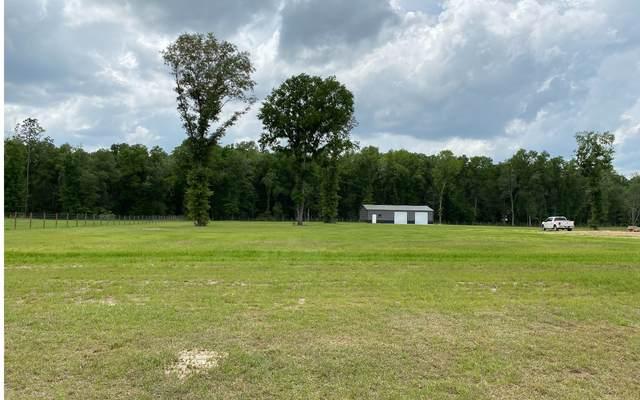 464 Homestead Circle, Fort White, FL 32038 (MLS #110989) :: Better Homes & Gardens Real Estate Thomas Group