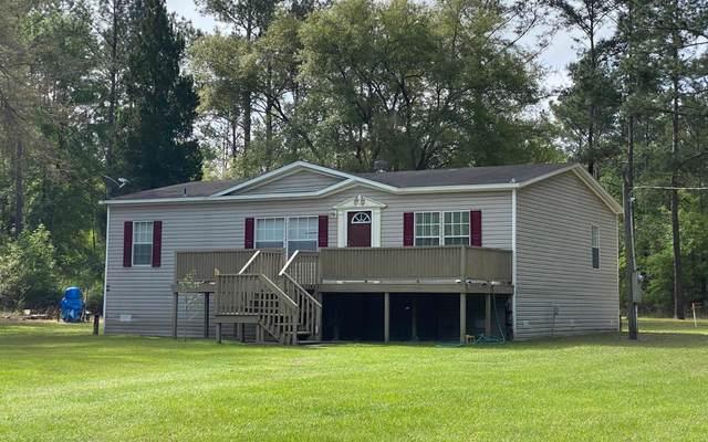 258 NE Riverside Blvd, Mayo, FL 32066 (MLS #110996) :: Better Homes & Gardens Real Estate Thomas Group