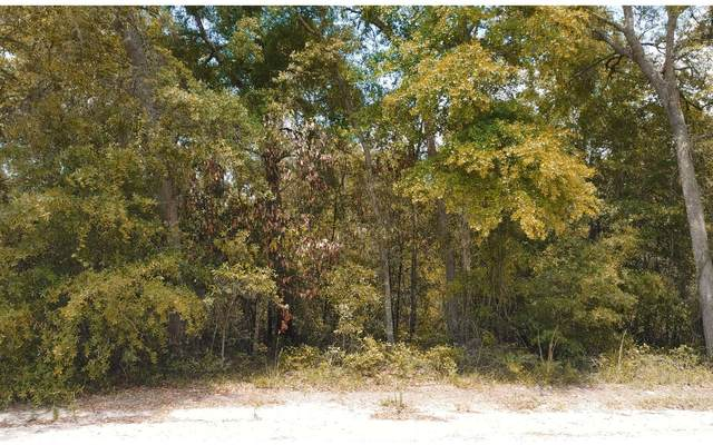 TBD 220TH PATH, OBrien, FL 32071 (MLS #110999) :: Better Homes & Gardens Real Estate Thomas Group