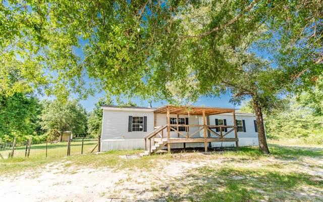 322 Fenton Glen, Fort White, FL 32038 (MLS #111546) :: Better Homes & Gardens Real Estate Thomas Group