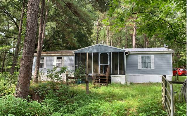 9517 254TH TERRACE, OBrien, FL 32071 (MLS #112125) :: Better Homes & Gardens Real Estate Thomas Group