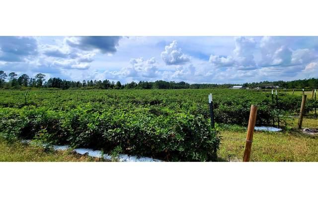 929 S Sr 51, Mayo, FL 32066 (MLS #113132) :: Better Homes & Gardens Real Estate Thomas Group