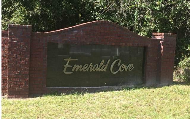 141 SW Woodleaf Court, Lake City, FL 32024 (MLS #113159) :: Better Homes & Gardens Real Estate Thomas Group
