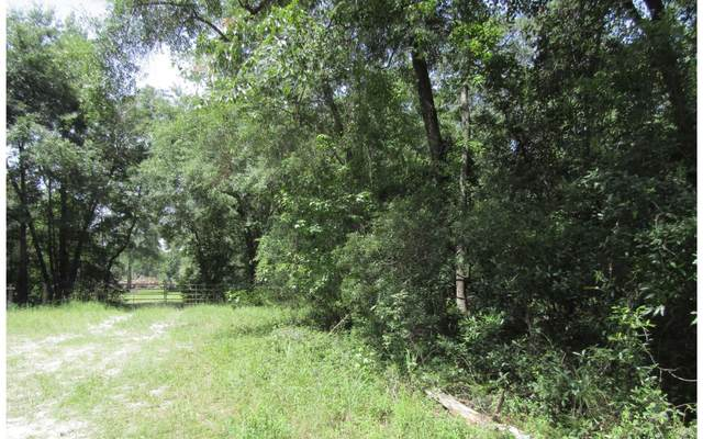LOT49 SW 32ND LN, Jasper, FL 32052 (MLS #96197) :: Better Homes & Gardens Real Estate Thomas Group