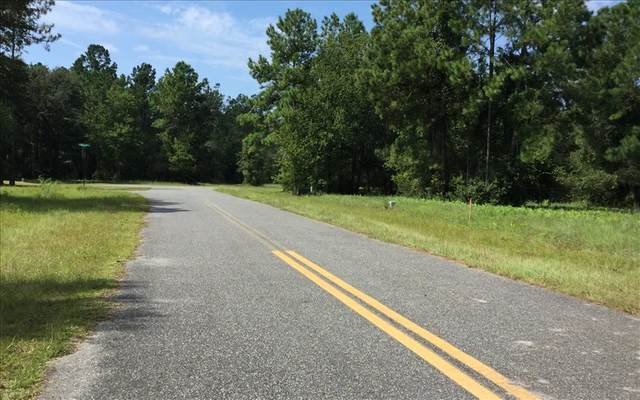 NW Mossy Oak Way, Lake City, FL 32055 (MLS #98794) :: Better Homes & Gardens Real Estate Thomas Group