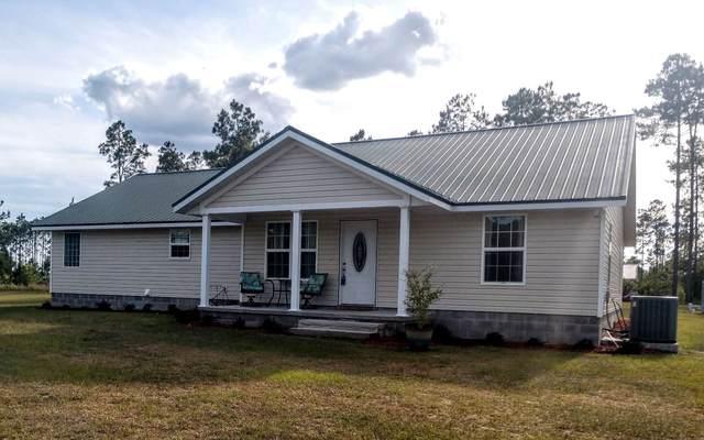 270 NW Edward Perry Lane, Mayo, FL 32066 (MLS #111138) :: Better Homes & Gardens Real Estate Thomas Group