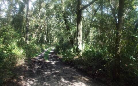 LOT 3 Cr 349, OBrien, FL 32071 (MLS #102220) :: Better Homes & Gardens Real Estate Thomas Group