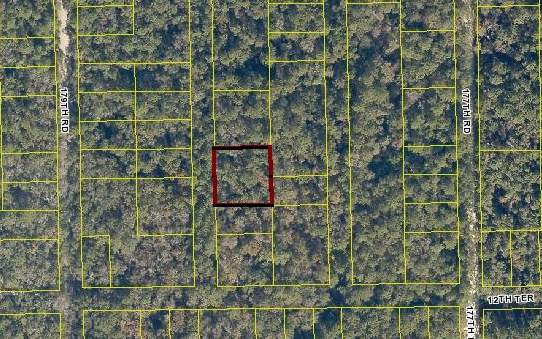 TBD 177TH COURT(LOT6&7), Live Oak, FL 32060 (MLS #103691) :: Better Homes & Gardens Real Estate Thomas Group
