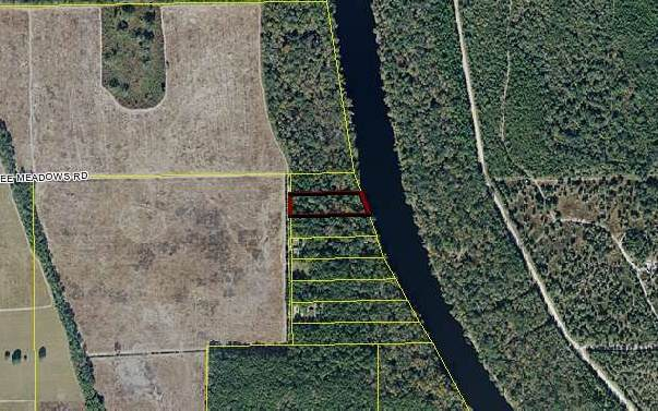 Suwannee Meadows Rd, Mayo, FL 32066 (MLS #105171) :: Better Homes & Gardens Real Estate Thomas Group