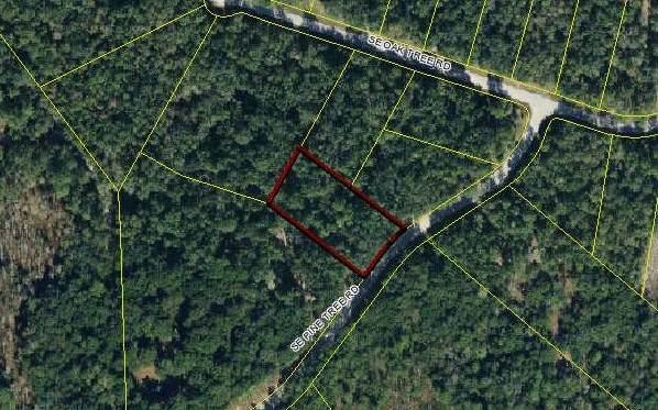 LOT51 SE Pine Tree Road, Branford, FL 32008 (MLS #105294) :: Better Homes & Gardens Real Estate Thomas Group