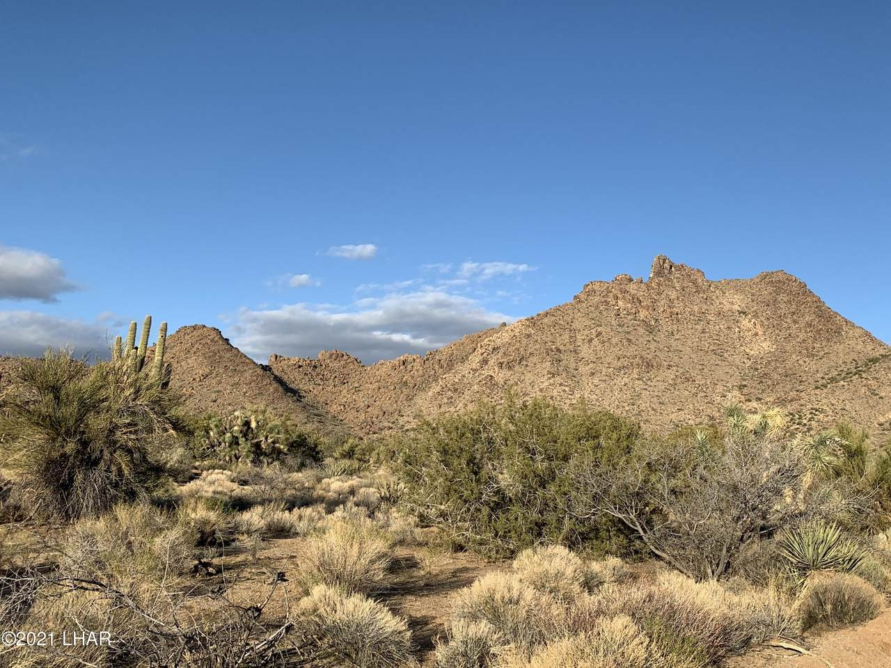 0000 160 Acres In Yucca - Photo 1