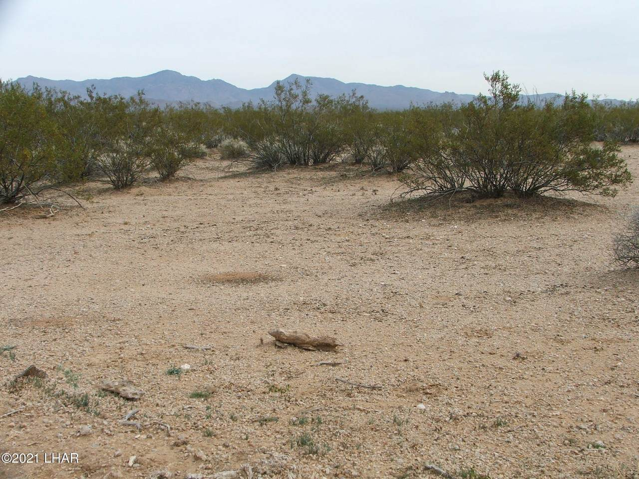 Parcel 660 Doc Holliday Rd - Photo 1