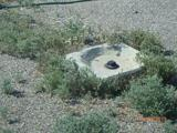 2995 Dome Rock Rd - Photo 6