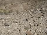00 Silver Stone Trail - Photo 9