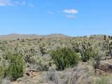 -2391 Yucca Dr - Photo 23