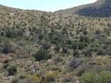 -2391 Yucca Dr - Photo 34