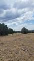 79 Acres High Mountain Rd - Photo 2