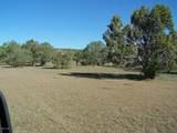 79 Acres High Mountain Rd - Photo 6