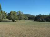 79 Acres High Mountain Rd - Photo 7
