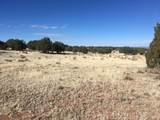 Lot 301 Peaceful Hill - Photo 15