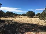 Lot 301 Peaceful Hill - Photo 8