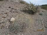 4205 Peruvian Dr - Photo 25