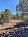 2391 Arizona St - Photo 34