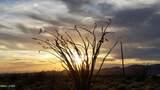 0000 Santa Fe Ranch Road Rd - Photo 10