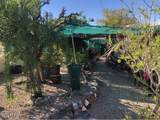 3860 Canyon Cove Dr - Photo 27