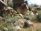 Lot 2391 Yucca Dr - Photo 26