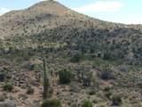 Lot 2391 Yucca Dr - Photo 35