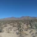 -998 Lone Ranger Rd - Photo 5