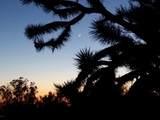 6343 Mountain View Dr - Photo 21